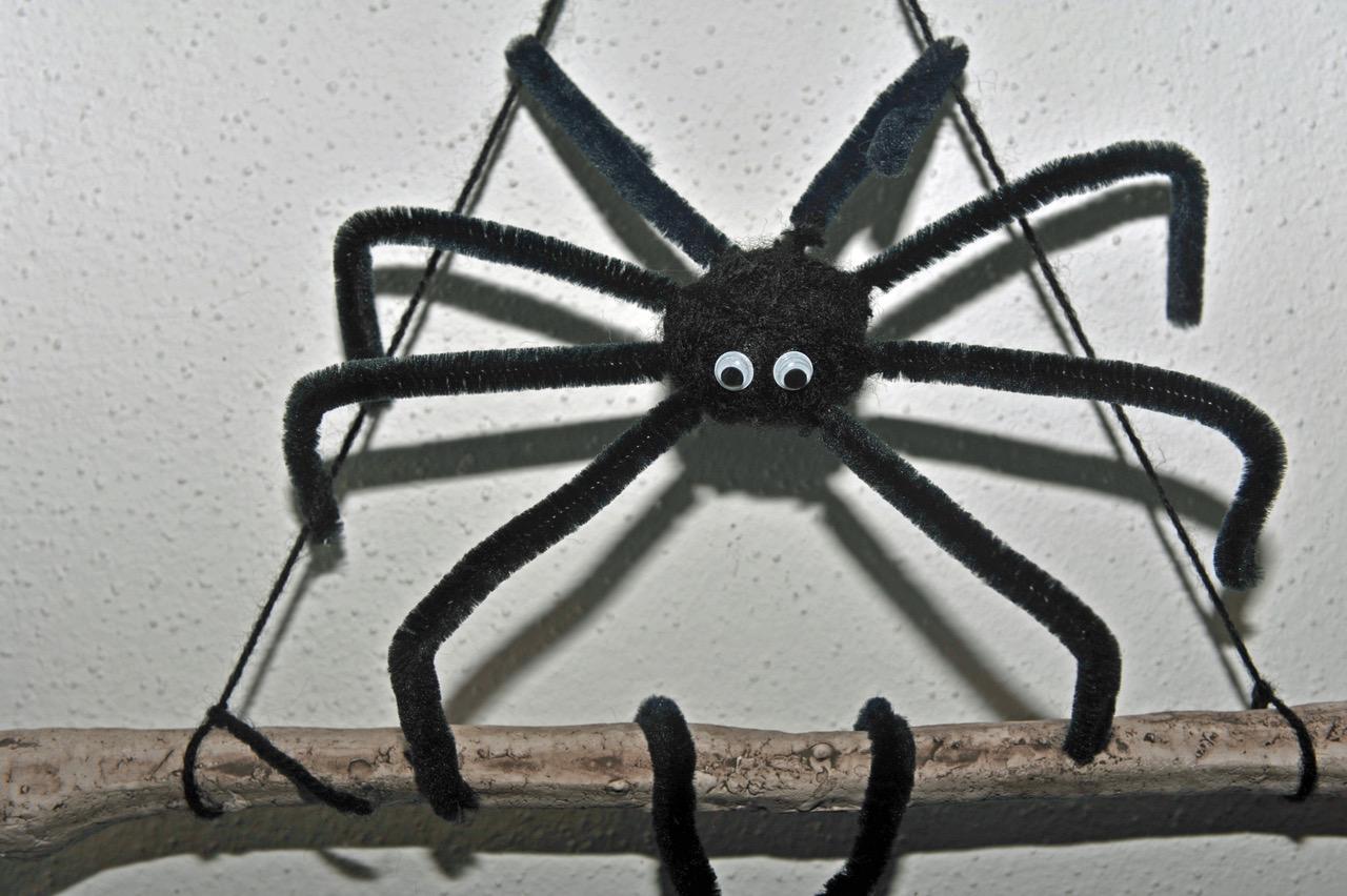 Nighttears' Spinne im Hausflur