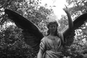 Hamburg-Friedhof-Ohlsdorf