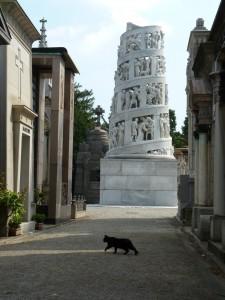 Mailand-Friedhof-schwarze-Katze