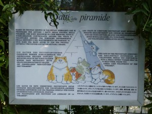 katzen-pyramide-rom-gatti-della-piramide