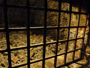 stefansdom-wien-katakomben