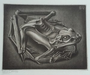 Froschmumie, 1946, Mezzotinto